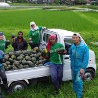 オイスカ西日本研修センター農作物販売会