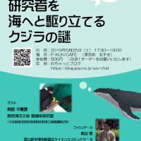 【★5月25日開催★】研究者を海へと駆り立てるクジラの謎