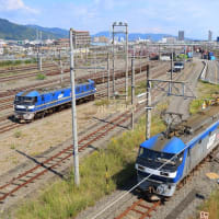 JR貨物 静岡貨物駅訪問記 (5073レ到着その4 機関車交代 2020年10月)