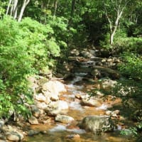 東北秘湯へ・・・10 乳頭温泉郷 鶴の湯