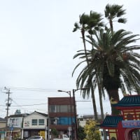 これから長崎、そして熊本へ