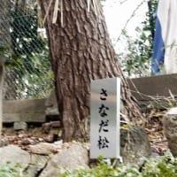 安居神社&大阪の清水寺