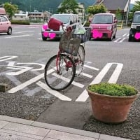 「近いから」「隙間あるから」身障者用スペースに車を停める人たち