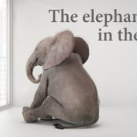 #1992 部屋にいる象(Elephant in the room)