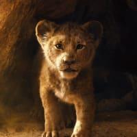 【映画】ライオン・キング…雌ライオンの見分けがつかない以外は良い出来だと認識