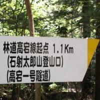 梅雨明けの高宕山トレイルラン 1593