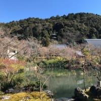 冬の京都 2020