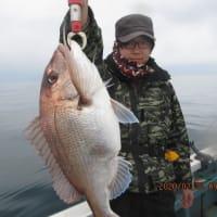 2月22日の釣果