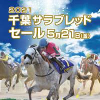 【千葉サラブレッドセール2021(2歳)】の「上場馬名簿」が発行(購買者登録ページ開設)