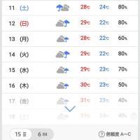 「梅雨末期の大雨」ってまだ当分、梅雨明けなさそうなんですけど