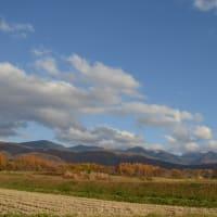里に下りた紅葉が、 里の山を錦に包む。