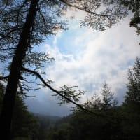 夏富士、霊峰の森