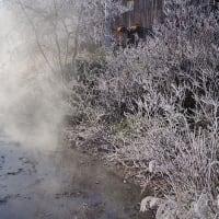 朝の幻 Frost