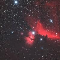 元気村で撮った馬頭星雲