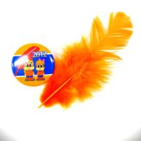 オレンジの羽根?