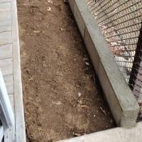 コンクリートの打設迄の作業に成りました