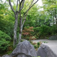 #0058 -'19. 京都 嵯峨野 宝筐院を訪ねて(6月23日の日記)