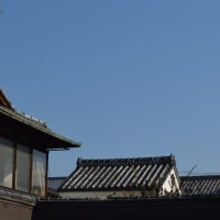 蔵のある風景中0435回 屋根だけ見えるのだが・・・