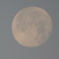 白いお月さまにおはよう