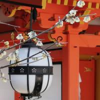 京の梅花情報 北野天満宮と京都御苑