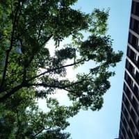 兵庫県 #高橋みつお 支援!神戸も暑い!熱いご支援に感謝!