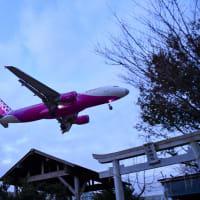成田空港B滑走路脇、東峰神社へカメラ持って早朝散歩
