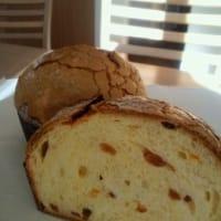 12月のパン「パネットーネ」 Panettone