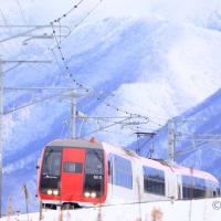 雪山をバックにスノーモンキー