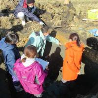沿岸部の復旧農地で土壌調査を実施しました。