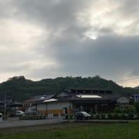 昨日の散歩にて佐敷城跡とソラマメ畑