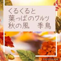 俳句 秋の風