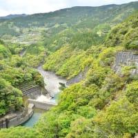 物部川 永瀬ダムの新緑