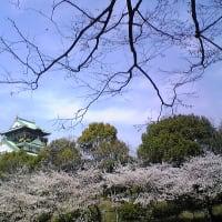 大阪城・春3