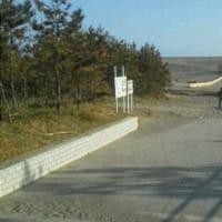 今日の中田島砂丘(2019年4月21日)いくつもの墓標