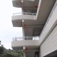 3階建てのツバメの巣?!