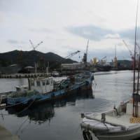 淡路島に行く H31,2,8