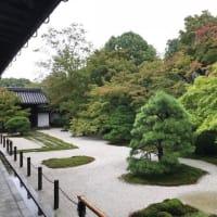 南禅寺の庭園、小堀遠州作庭「虎の子渡しの庭」の伝説。