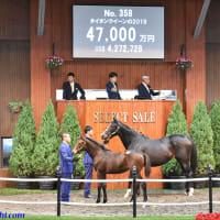 【セレクトセール2020(Select Sale、1歳&当歳)】の「上場馬一覧」が発表!