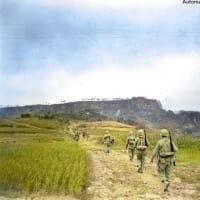 今日は終戦記念日