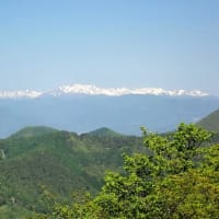 ツツジを眺めに赤城山の鍋割山を散策