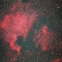 庭でNGC7000(北アメリカ星雲)