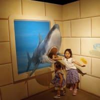 軽井沢への旅 (2) ・・・トリックアート ミュージアム