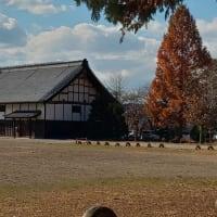 龍岡城跡 (長野県佐久市) 日本で二か所だけの五稜郭