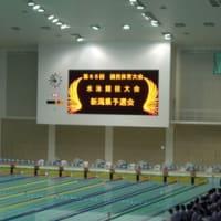 第65回 国民体育大会水泳競技大会新潟県予選会