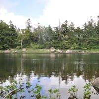 8月24日(土)巨岩と奇木の神秘の森・蓬莱境&蓬莱「コケ・シダ・トンボの楽園でミクロの世界へ」を開催しました。