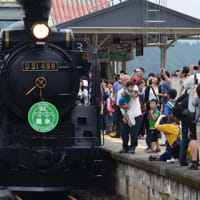 蒸気機関車に乗ってきました