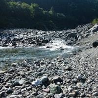 川原散歩する