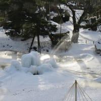Senshu Park, Nakadobashi, and Hirokoji on Friday morning