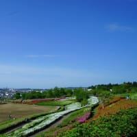 ●大乗寺丘陵公園 ツツジと青空 金沢市眺望 彫刻の丘