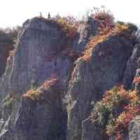 南魚沼 金城山(2019.11.2)